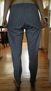 woven hudson pants before
