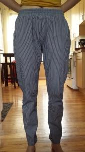 woven hudson pants beofre